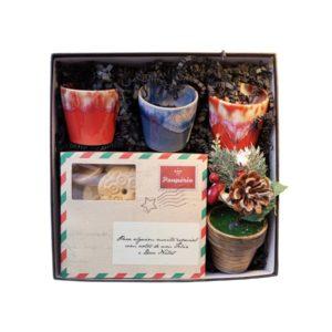 Gift Box Copos de Café Grespresso Costa Nova e Sortido de Bolachas Paupério Natal